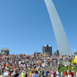 Tea Party Rally in Saint Louis Missouri — Stock Photo #13518654