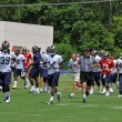 Постер, плакат: Saint Louis Rams Training Camp