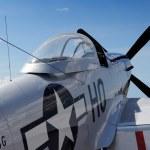 Постер, плакат: Detail of P 51 Mustang