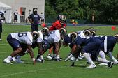 2009 Saint Louis Rams Training Camp — Stock Photo
