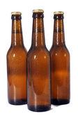Pivní láhve — Stock fotografie