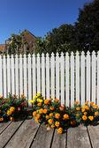 White Fence and Garden — Stock Photo
