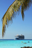 Palm Tree Branch and Cruise ship — Stock Photo