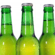 Stock Photo: Three Green Beer Bottles