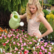 Young Woman Using Watering Can — Stock Photo #13993524