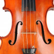 Vintage Violin - Close Up View — Stock Photo #13993543