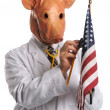 Swine Flu in America Concept — Stock Photo