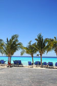 Resort Beach in the Caribbean — Foto de Stock