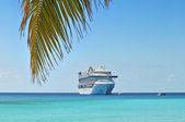 Palm Branch and Cruise Ship — Stock Photo