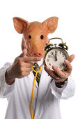 Doctor With Pig Head Pointing at Clock — Stock Photo