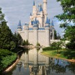 Disney Castle in Orlando - Stock Photo