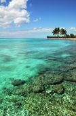 Isola e barriera corallina — Foto Stock