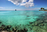 Tropical Paradise — Stockfoto