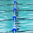 Stock Photo: Swimming Pool With Lane Divider