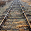 Railroad Tracks — Stock Photo #15815535