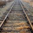 Railroad Tracks — Stock Photo