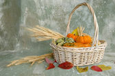 Harvest and Basket — Stock Photo