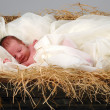 Stock Photo: Baby Jesus in Manger