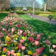 Saint Louis Botanical garden - Stock Photo