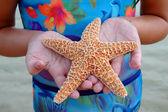 Girl Holding Starfish — Stock Photo