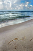 Footprint on the Shore — Stock Photo