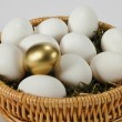 The Golden Egg — Stock Photo