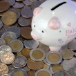 Stockfoto: Piggy Bank and Currency
