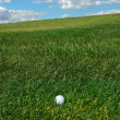 Golf Ball im the Rough — Stock Photo