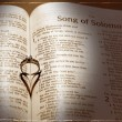 Wedding Ring and Bible - ストック写真