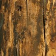 Stock Photo: Grungy Wood in warn colors