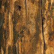 Grungy Wood in warn colors — Stock Photo #16859957