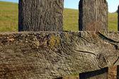 Wood Fence Close-Up — Stock Photo