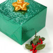 Gift and Holly — Stock Photo