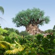 Stock Photo: Tree of Life at Disney World