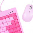 Stock Photo: Rosy keyboard and mouse isolated on white background
