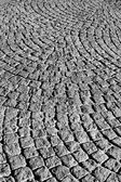 Black and white cobbled roadway texture — Stock Photo
