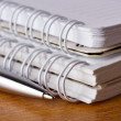 Metallic pen and two notepads lying on desk - Stock Photo