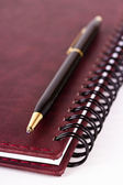 Black and gold expensive pen lying on closed spiral notebook — Stock Photo