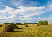 Rural landscape with hay stacks — Stock Photo