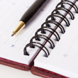Stock Photo: Close-up view of black and gold metallic pen lying on opened spi