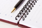 Close-up view of black and gold metallic pen lying on opened spi — Stock Photo
