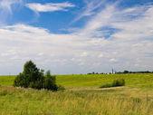 Russian summer landscape — Stock Photo