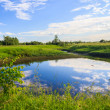 Beautiful summer landscape at the bank of a small river — ストック写真
