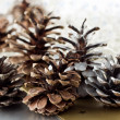 Christmas pine cone decoration — Stock Photo