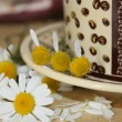 Foto Stock: Guessing on camomile