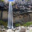 Stock Photo: Svartifoss waterfall, Iceland