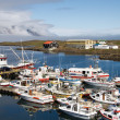 Stock Photo: Fishing Village Djupivogur Harbour, Iceland