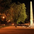 Park path with illuminated obelisk at night, Brno — Stock Photo