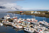 Fishing Village Djupivogur Harbour, Iceland — Stock Photo