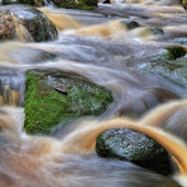 Waterfall with rocks in forest — Stock Photo